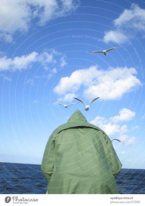 Man fishing seen from back with seagulls Wolken Möwe Meer Himmel man man von hinten Angeln birds. sea clouds sky Lachmöwe