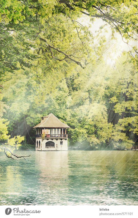 Bootshaus am Thunersee Umwelt Natur Pflanze Wasser Seeufer braun gelb grün Thuner See Sommerurlaub sommerlich Außenaufnahme Menschenleer Textfreiraum unten Tag