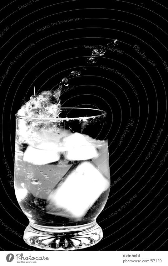 Eiswürfel Wasser Glas Wassertropfen spritzen Trinkwasser Mineralwasser Eiswürfel