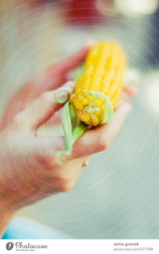 Mais Ferien & Urlaub & Reisen Sommer Sonne Freude Strand gelb Essen Gesundheit Freizeit & Hobby gold Tourismus Ausflug Ernährung genießen Abenteuer Gemüse