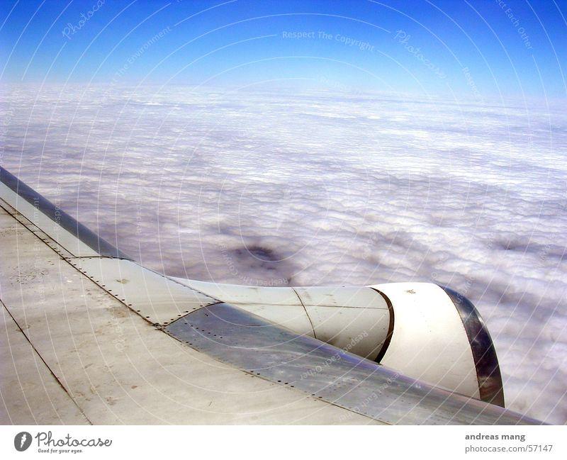 Über den Wolken Himmel Horizont fliegen Flugzeug Flügel Decke Abdeckung Düsenflugzeug Triebwerke Tier Wolkendecke