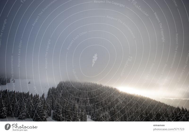 Wald unter den Wolken Himmel Natur Ferien & Urlaub & Reisen Baum Landschaft Winter Berge u. Gebirge kalt Schnee Wetter Nebel Luft Eis wandern