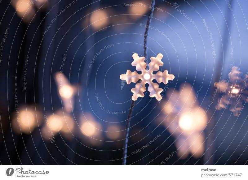 Glanzpunkte I blau Weihnachten & Advent weiß ruhig gelb Gefühle Stimmung orange warten Dekoration & Verzierung Warmherzigkeit Hoffnung Romantik Glaube