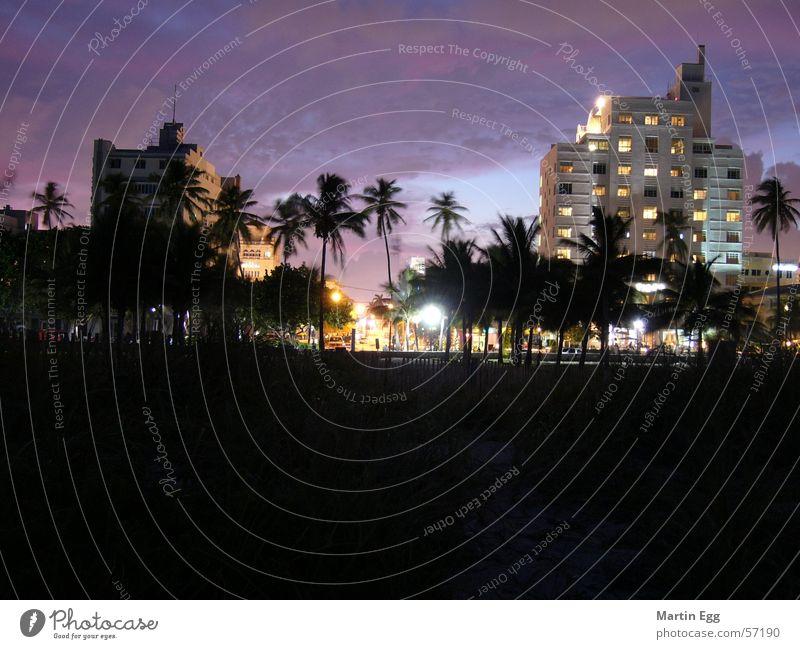 Miami Beach Florida Ferien & Urlaub & Reisen Sonnenuntergang Art deco Palme Strand south beach Architektur