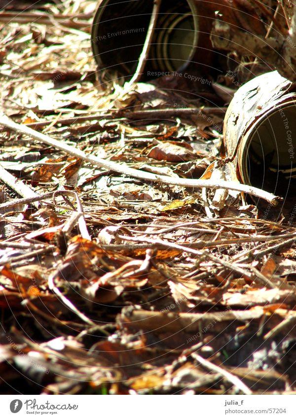 dosen Natur Blatt braun dreckig Umwelt Ast Dose Blech Konservendose