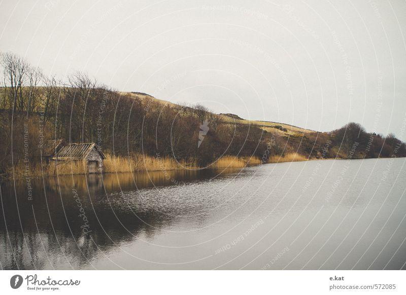 //Schottland_8 Umwelt Natur Landschaft Seeufer Teich Farbfoto Textfreiraum oben Textfreiraum unten Morgendämmerung
