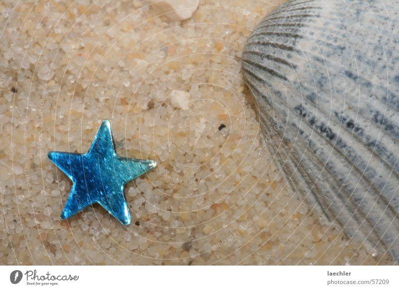 Strand Muschel Sandkorn Ferien & Urlaub & Reisen Stern (Symbol)