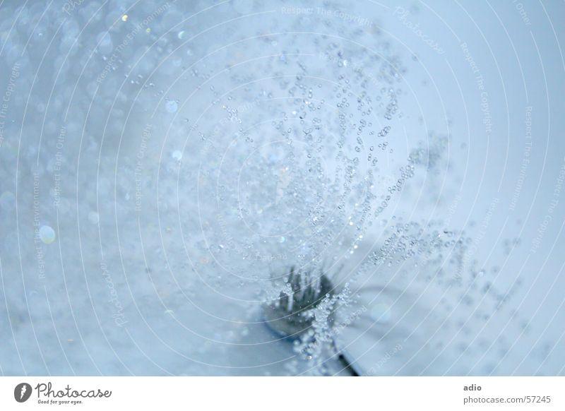 Unter der Dusche nass Badewanne Wasser Duschkopf Dusche (Installation) blau Wassertropfen spritzen Unter der Dusche (Aktivität)