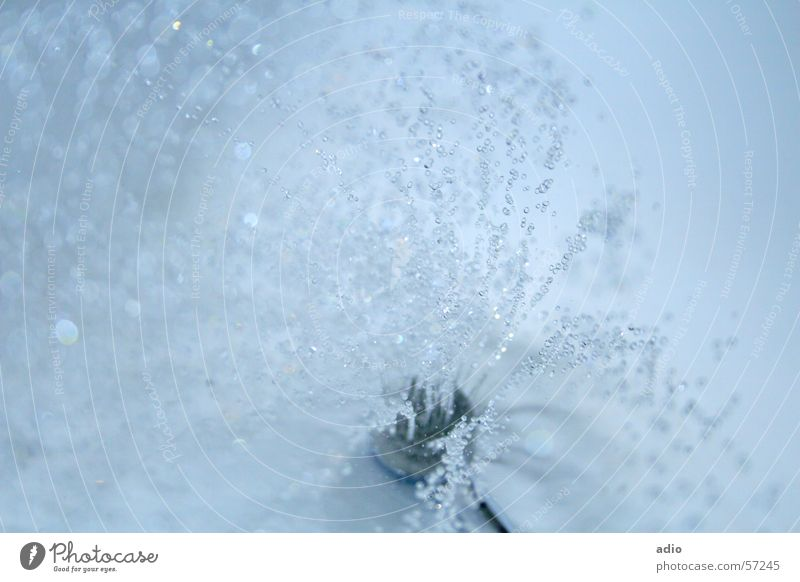 Unter der Dusche Wasser blau Wassertropfen nass Bad Dusche (Installation) Badewanne spritzen Duschkopf Unter der Dusche (Aktivität)