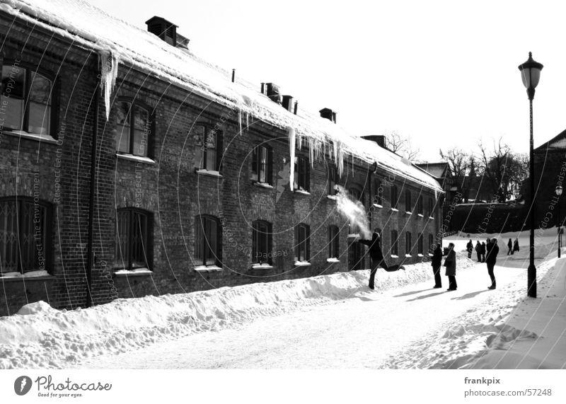 Oslo Icicles Winter Norwegen Skandinavien
