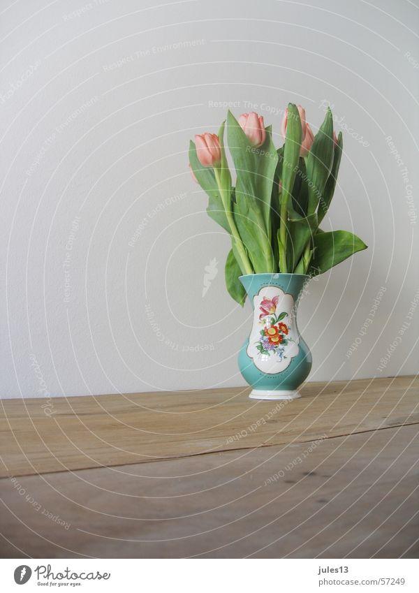 frühling weiß Blume grün Wand Holz Tisch Kitsch Tulpe Vase