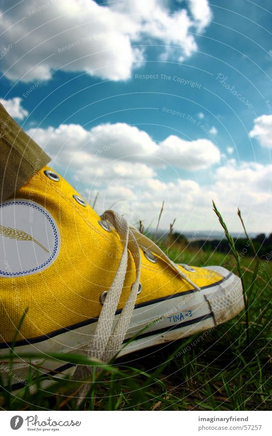 chucks Himmel Wolken Wiese Gras Schuhe Länder Chucks Turnschuh
