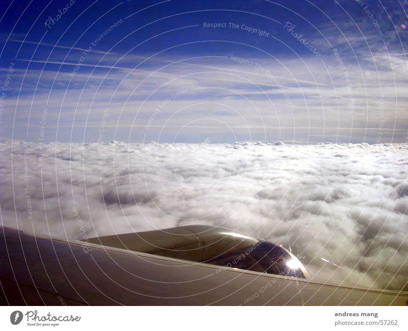 Freiheit Flugzeug Triebwerke Wolken Wolkendecke Horizont Meer Himmel Abdeckung düse Flügel Decke fliegen wolkenmeer clouds sky flying aeroplane Düsenflugzeug