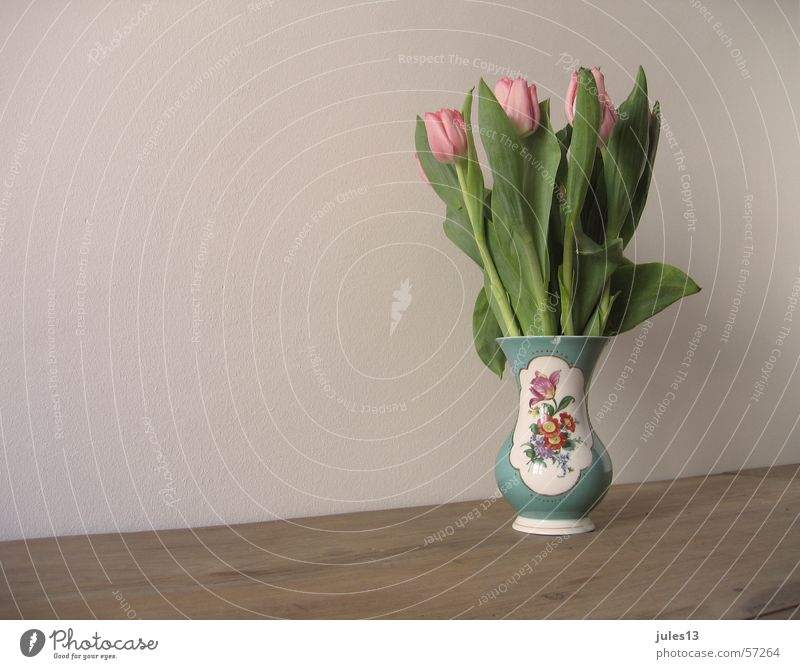 Tulpen Vase Blume mehrfarbig rosa Tisch braun Wand grün Anschnitt Kitsch Geschirr