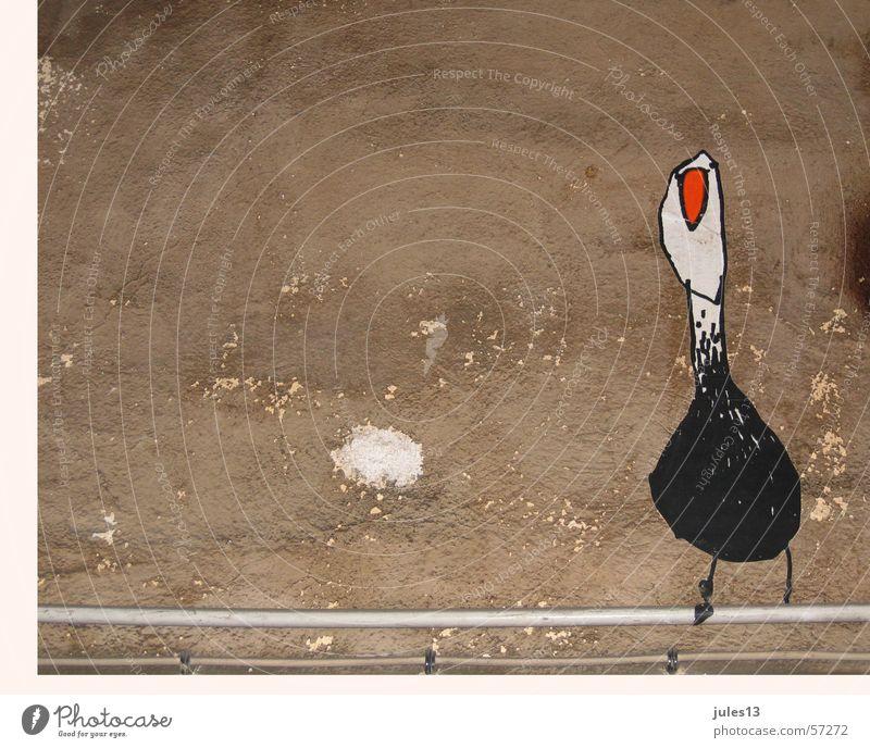 vögelchen Wand Putz Vogel rot weiß schwarz braun Leitung Mauer Graffiti Wanddekoration handgemalt Außenaufnahme