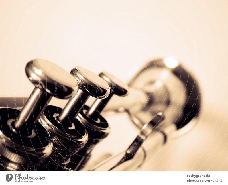 Trompete Musik Musiker Blasinstrumente Konzert Musikinstrument Blech Jazz Blues Mensch Blaskapelle