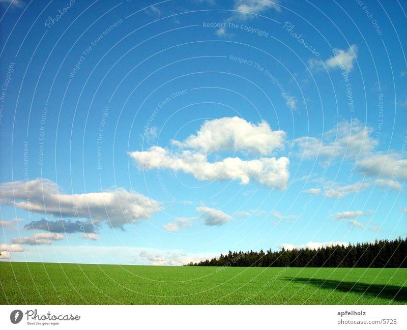 steinwald2 Wolken Wald Wiese Blauer Himmel Mai