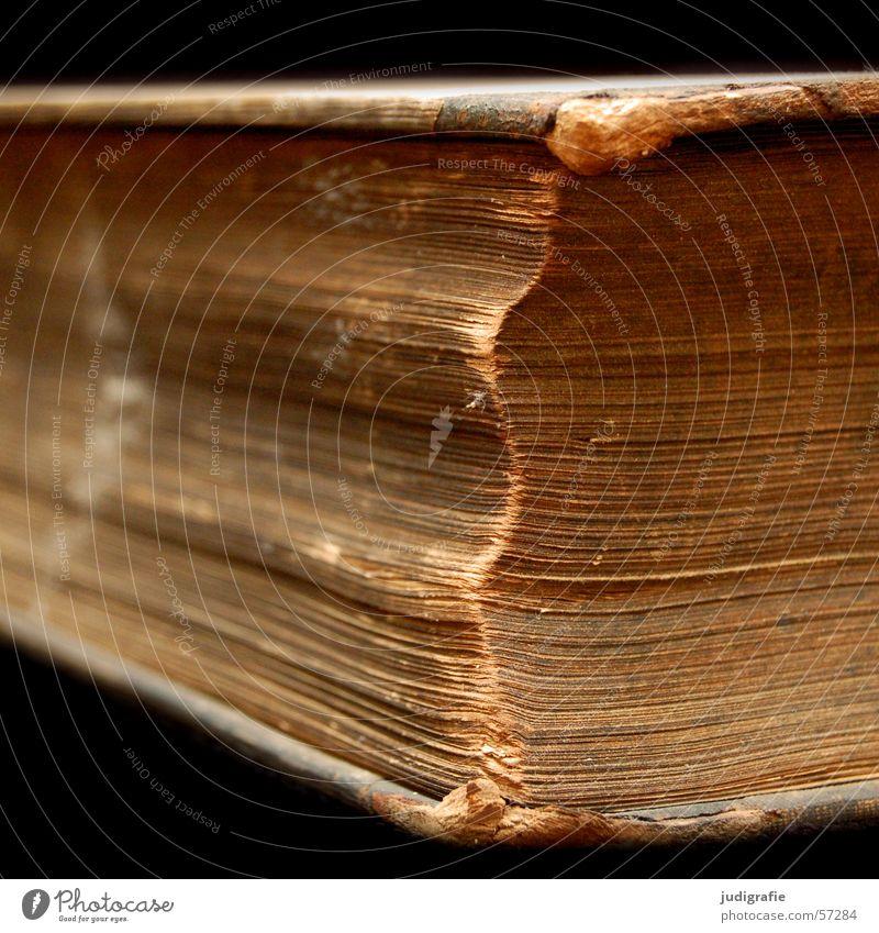 Wissen alt Blatt schwarz braun Zusammensein Buch lernen Papier Studium kaputt lesen Bildung Information Neugier schreiben Seite