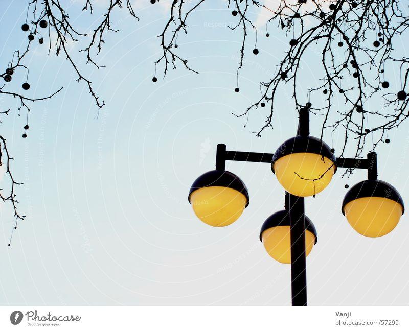 Laterne Himmel Baum blau gelb Wetter rund Ast Kugel Laterne