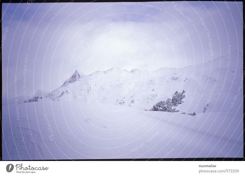 wenn der Berg ruft Natur Ferien & Urlaub & Reisen Erholung Landschaft Ferne Winter Berge u. Gebirge kalt Schnee Sport Horizont Schneefall Tourismus Eis wandern