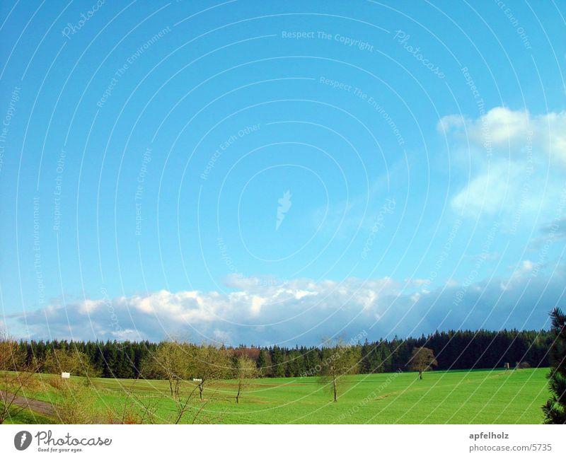 frühlingsfarben Frühling grün Himmel blau Landschaft