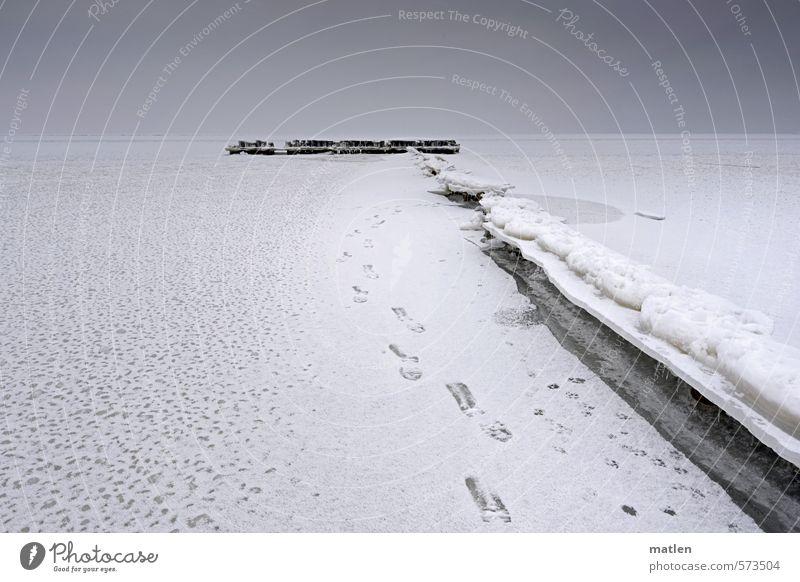 break Landschaft Himmel Wolken Horizont Winter Wetter schlechtes Wetter Eis Frost Küste Ostsee schwarz weiß Holzpfahl brechen Farbfoto Gedeckte Farben