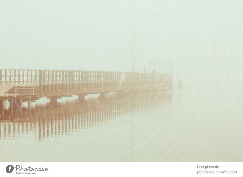 kleine Müritz Umwelt Natur Landschaft Wasser Himmel Herbst schlechtes Wetter Nebel Seeufer Brücke Bauwerk Architektur kalt nass natürlich weich Gelassenheit