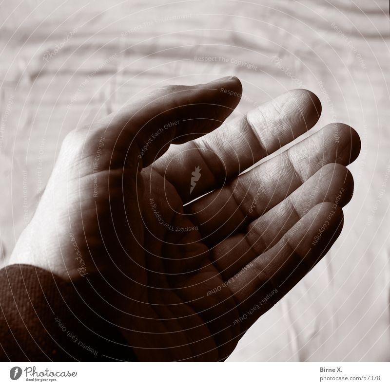 Give me your hand! Hand Finger offen Wunsch betteln auffordern Handfläche einladen