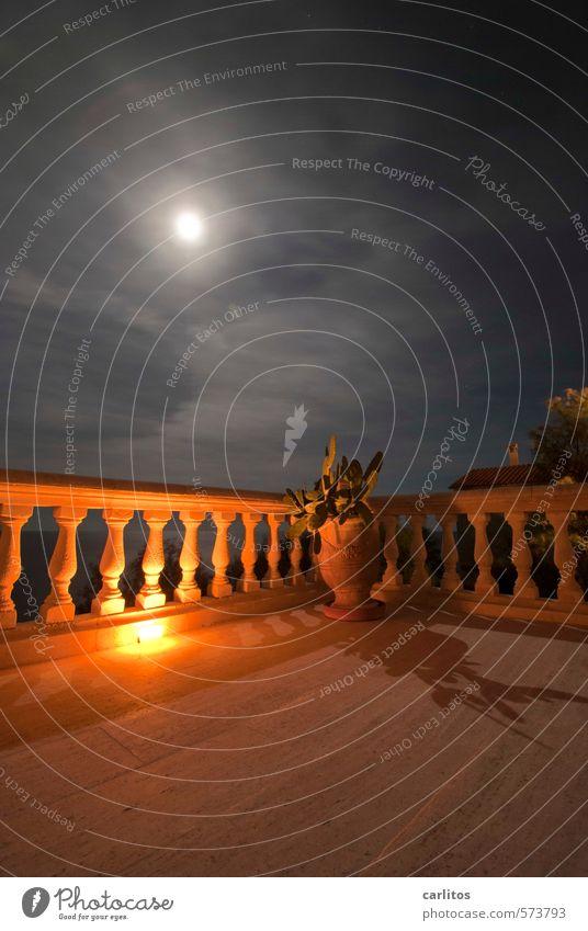 Damals war's .... Himmel Nachthimmel Mond Vollmond Sommer Schönes Wetter Balkon Terrasse Erholung Sommernacht Geländer Säule Naturstein Terrakotta Blumentopf