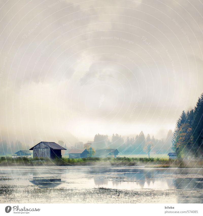 Neblig II Himmel Wasser Landschaft Wolken Umwelt Gefühle Herbst Nebel Urelemente Trauer Teich Wasserdampf Nebelbank