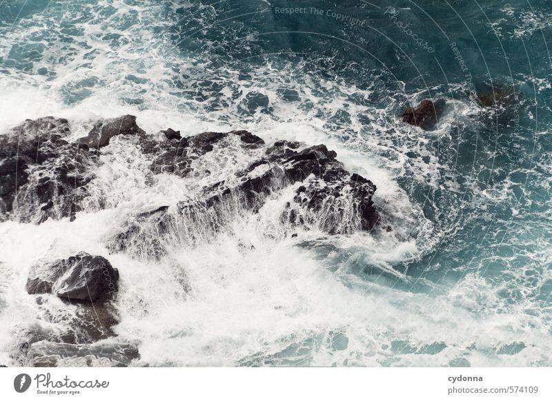 Brandung Natur Wasser Meer Umwelt Leben Bewegung Küste Freiheit Felsen wild Kraft Wellen Wind gefährlich Vergänglichkeit Wandel & Veränderung