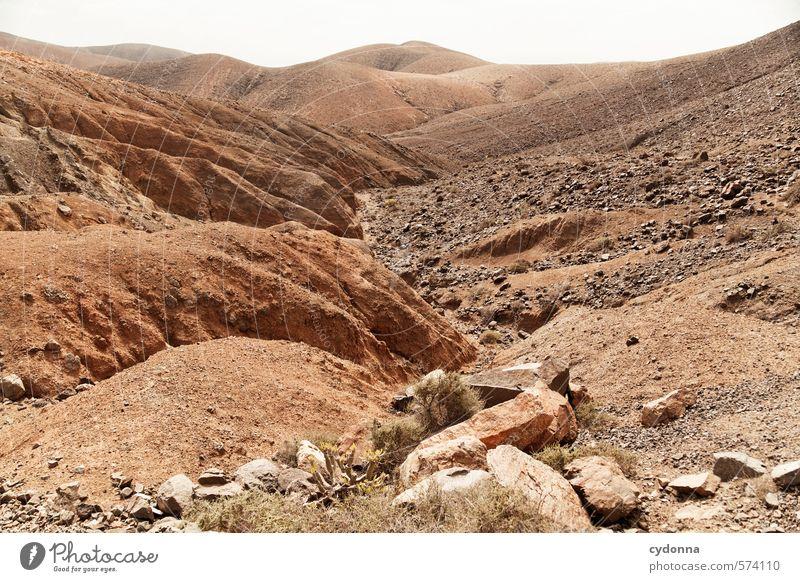 Fuerteventura Natur Ferien & Urlaub & Reisen Einsamkeit Landschaft ruhig Ferne Umwelt Wärme Wege & Pfade Tod Freiheit Stein Felsen Horizont Erde Klima