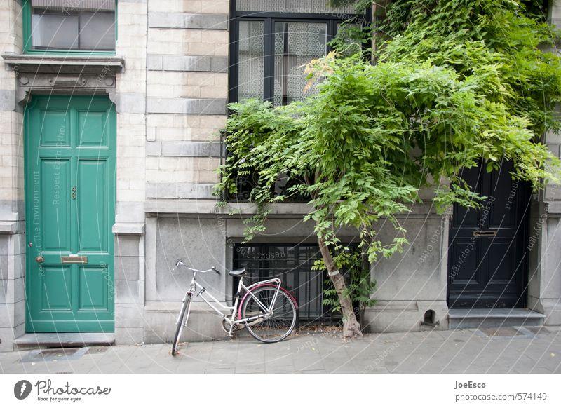brux Lifestyle Reichtum Stil Freizeit & Hobby Häusliches Leben Wohnung Traumhaus Fahrrad Pflanze Baum Stadt Stadtzentrum Menschenleer Haus Bauwerk Gebäude