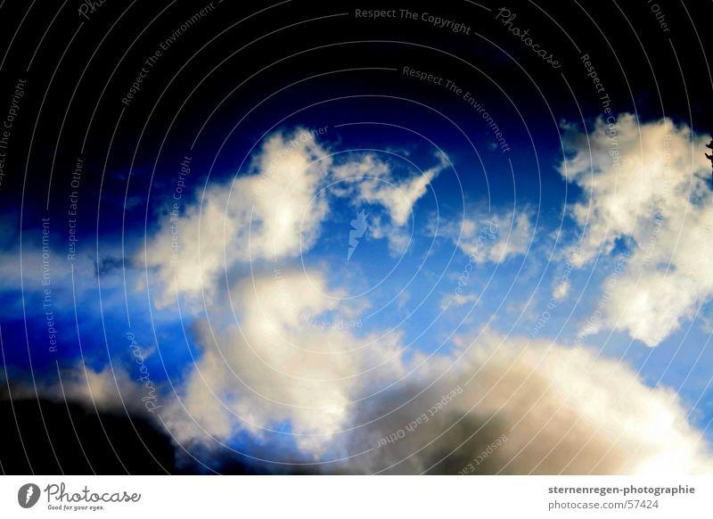 o.t. Himmel blau Wolken Freiheit Regen Flugzeug fliegen frei Gewitter