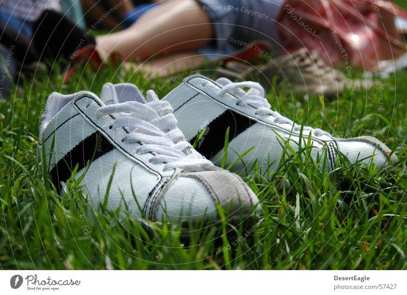 Schuhe im Gras Sommer Freude Coolness Rasen Chucks Turnschuh Oldtimer