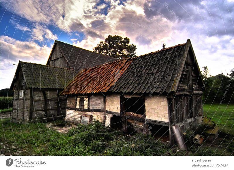 Heuerhaus kurz vorm Abriss Haus Bauernhof Wolken Dach Himmel Amerika Farbe Architektur