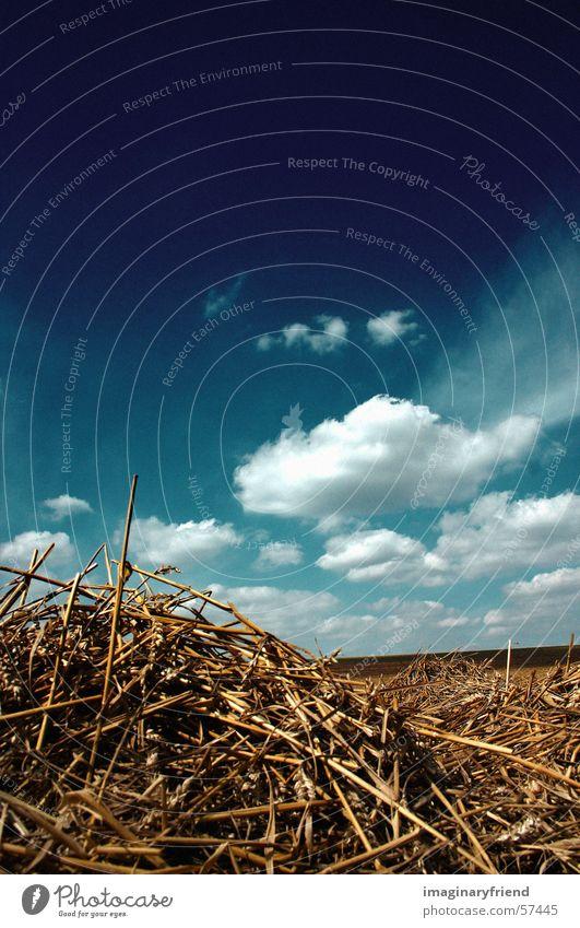 stroh und wolken Wolken Feld Länder Himmel country Korn Ernte