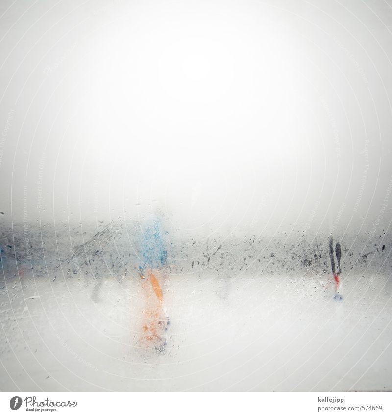 saisoneröffnung Mensch Freude Winter Sport Menschengruppe Freizeit & Hobby Eis Wetter Nebel Wassertropfen Klima Fitness Frost Sport-Training Stadion Wintersport