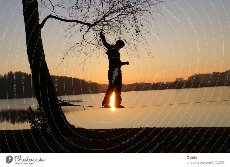 Slacklinen am See Mensch feminin Frau Erwachsene 1 Natur Landschaft Wasser Himmel Sonnenaufgang Sonnenuntergang Herbst Baum Seeufer festhalten Sport trendy