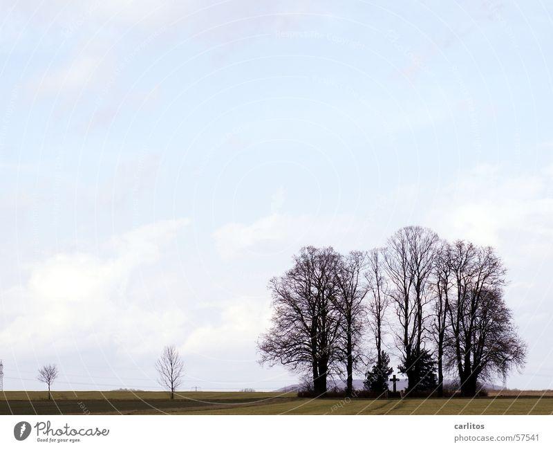 die Ewigkeit ist ganz schön lang ! Himmel Baum schwarz Wolken dunkel Herbst grau Rücken Hoffnung Trauer Denkmal feucht Erinnerung Tränen Grab