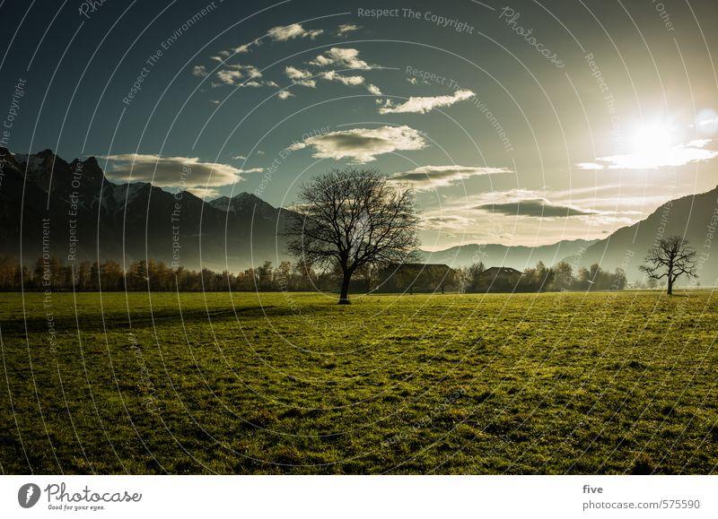 . Umwelt Natur Landschaft Pflanze Erde Himmel Wolken Sonne Sonnenaufgang Sonnenuntergang Herbst Schönes Wetter Baum Blume Gras Wiese Feld Wald Hügel Felsen