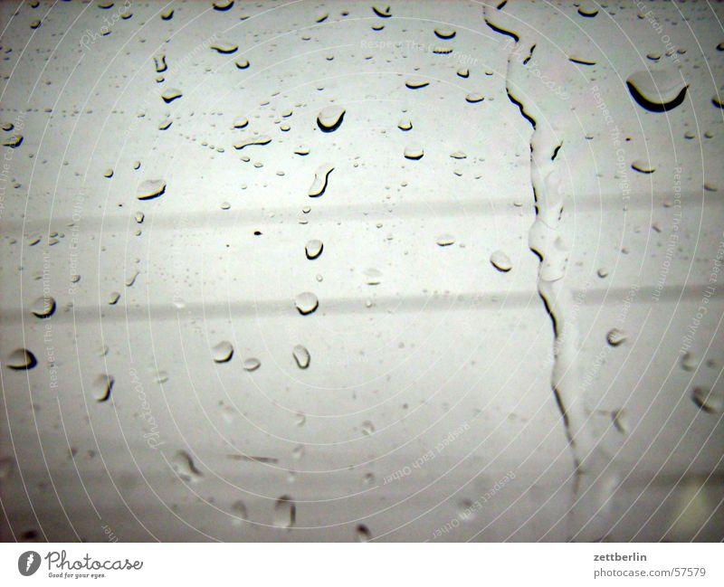 Immer noch grau Regen Glas Wetter Wassertropfen Fensterscheibe November trüb Glasscheibe schlechtes Wetter