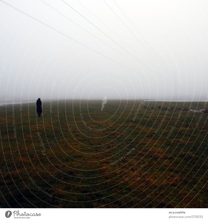 to nowhere Mensch Himmel Natur Einsamkeit Landschaft Wolken Ferne Umwelt Wiese Herbst Küste Linie Stimmung Luft Körper Feld