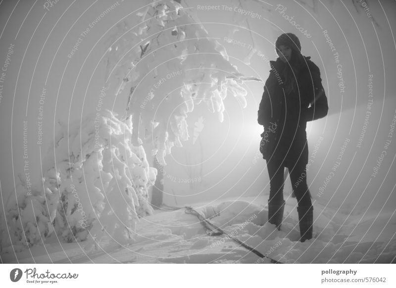 backlight Mensch feminin Junge Frau Jugendliche Erwachsene Leben Körper 1 18-30 Jahre Winter schlechtes Wetter Nebel Schnee Baum Wald Jacke Mütze selbstbewußt
