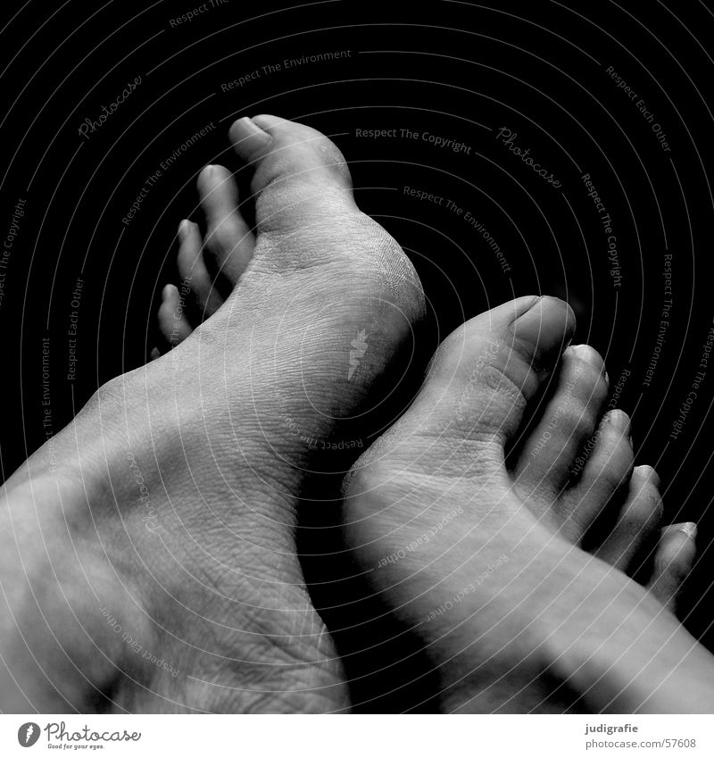 Füße Frau Mensch weiß schwarz Fuß 2 Haut berühren Zehen Ziffern & Zahlen