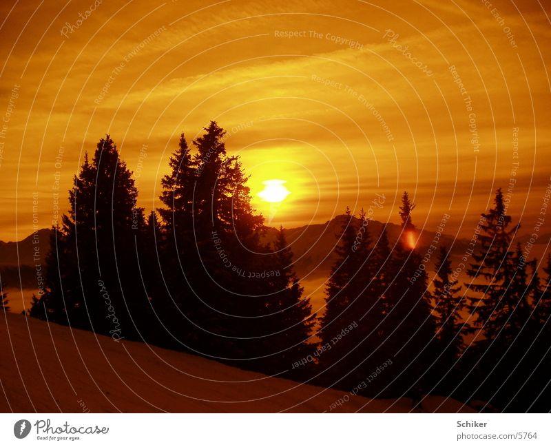 Sonnenuntergang Aussicht Tanne Berge u. Gebirge Schnee