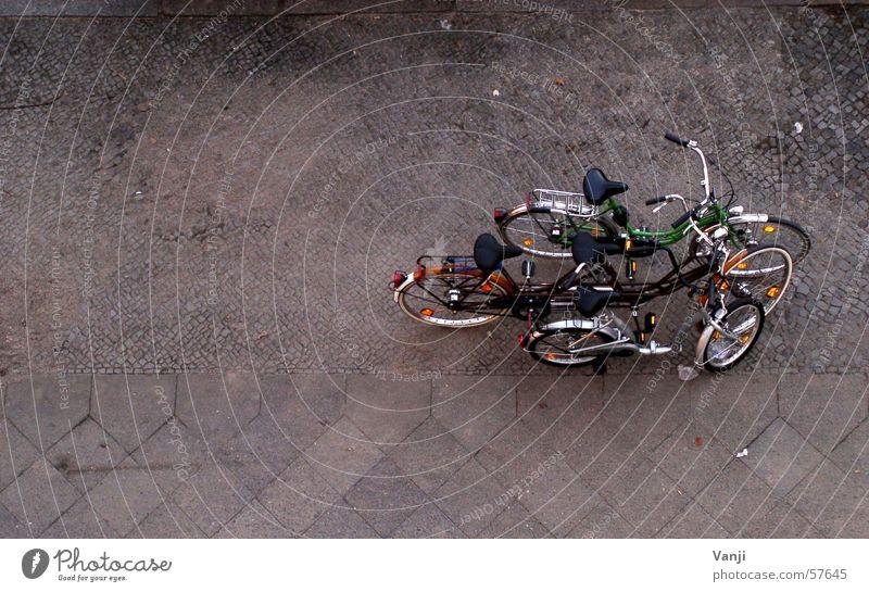 Gruppenfoto Straße Wege & Pfade Fahrrad Zusammensein mehrere gruppieren