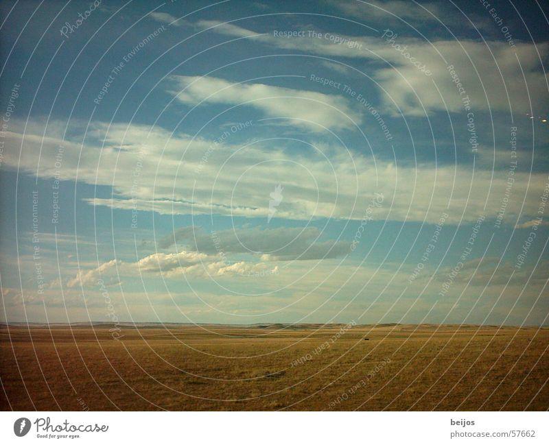Unendliche Weite Natur schön alt Himmel blau Freude ruhig Wolken gelb Ferne Freiheit Landschaft Raum groß Horizont USA