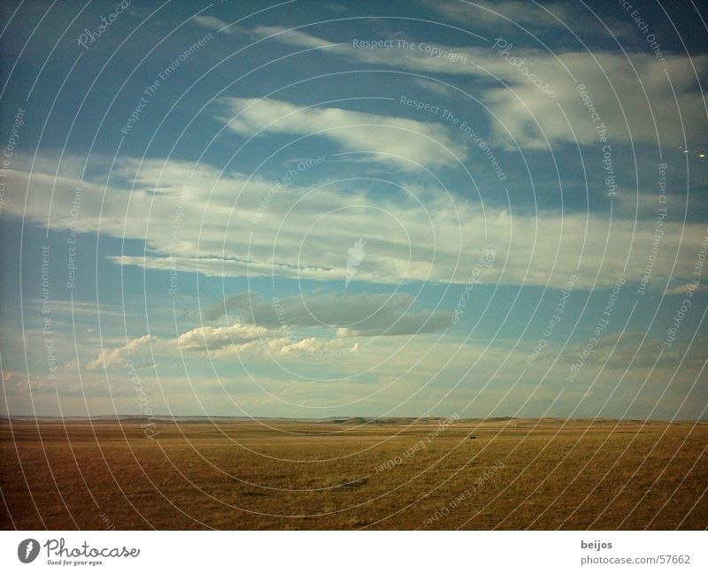 Unendliche Weite Steppe gelb Ferne schön flach wellig Wolken Zuckerwatte erhaben tief groß Horizont ursprünglich ruhig Unbeschwertheit Außenaufnahme Natur USA