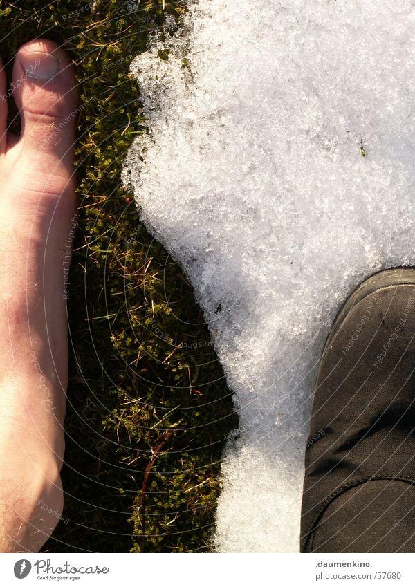 Zwischen den Zeiten Wiese Zehen Schuhe Licht Winter Frühling Sommer kalt Physik Widerspruch Schnee Fuß grass Sonne Haut Beine Wärme Kontrast Barfuß
